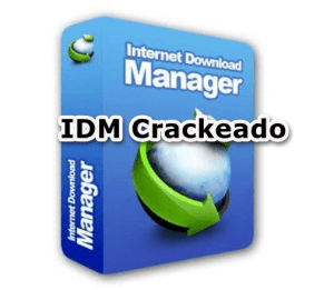 Cracked IDM