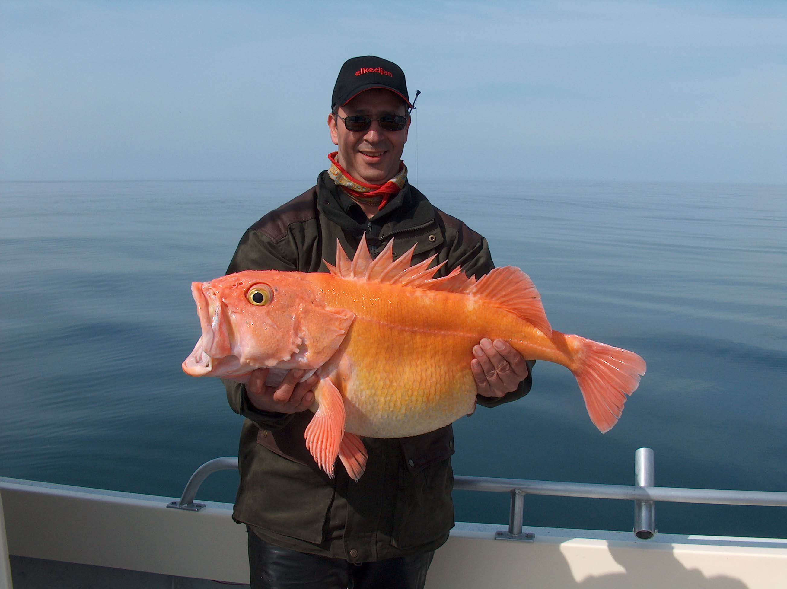 Full Day Fishing Charters From Seward Alaska