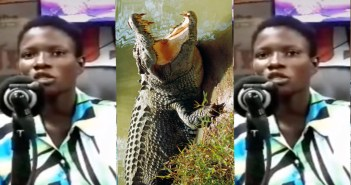 young lady impregnanted by crocodile