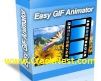 Easy GIF Animator 7 License Key Plus Crack Download [Free] Full Version