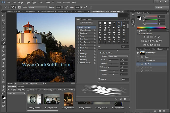 photoshop application free  software
