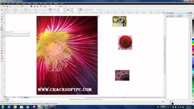 crack software download-CrackSoftPC