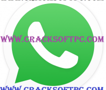 WhatsApp Messenger 2.12.250 (arm) APK Latest Version Is Here!