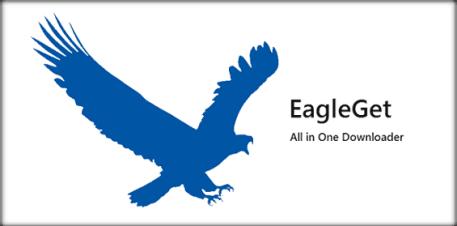 EagleGet windows