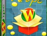 Wipe Professional 2021.06 Crack Download HERE !