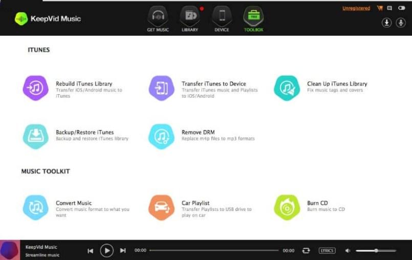 KeepVid Music Pro windows