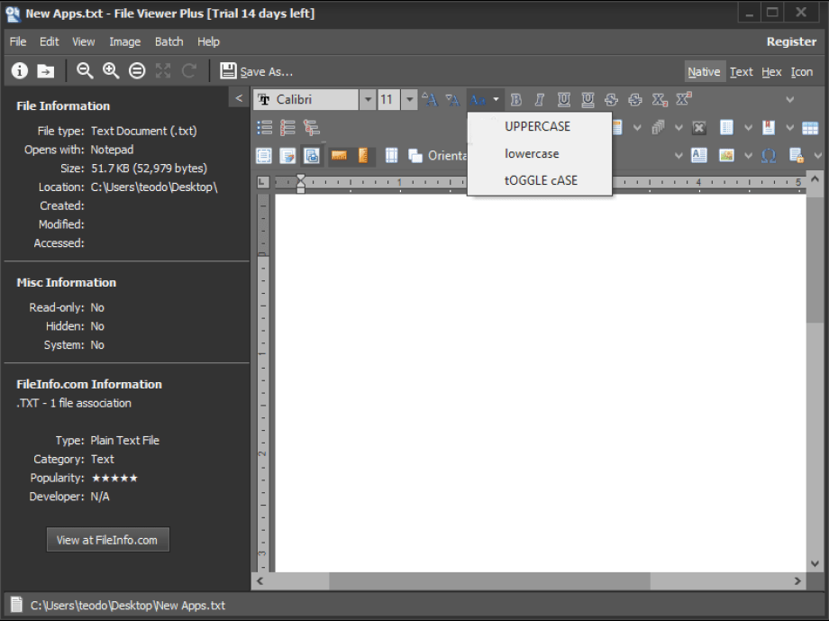 File Viewer Plus windows