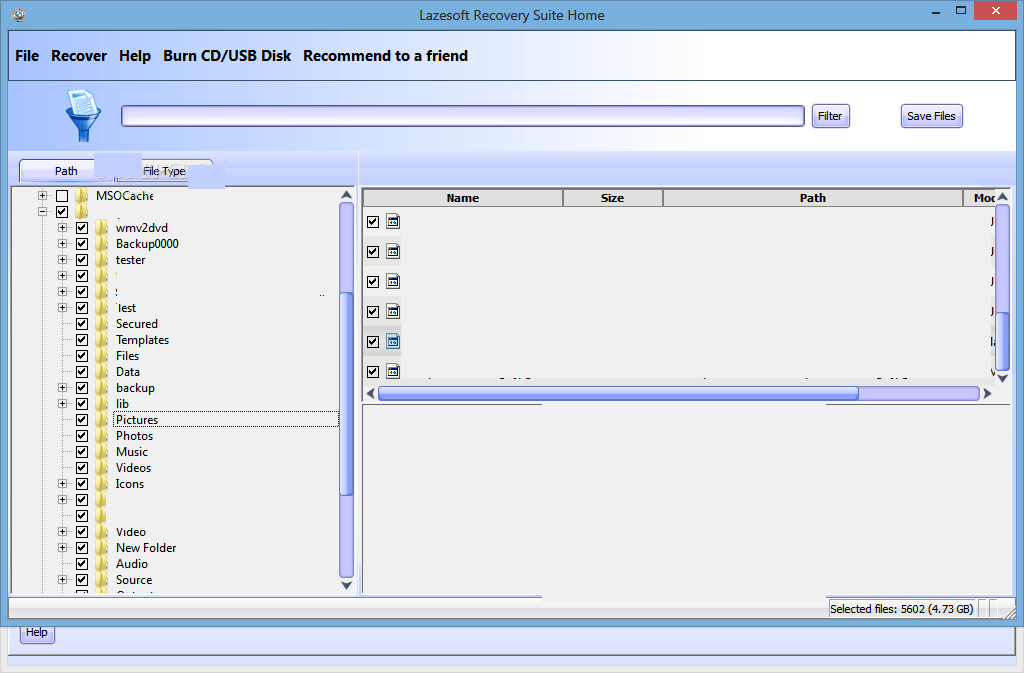 Lazesoft Recovery Suite windows