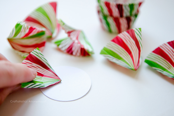 Wrapping Bow Cupcake Wrappers