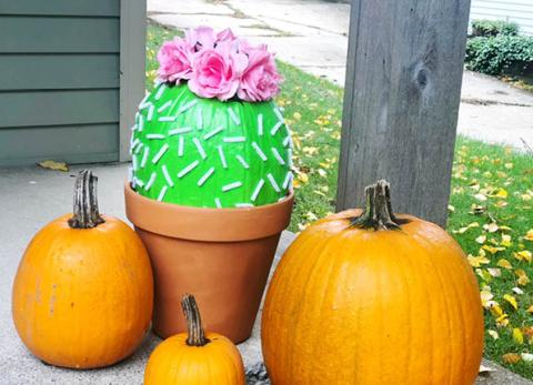 If you're looking for a creative way to paint a pumpkin, our Cactus Painted Pumpkin is the perfect idea.