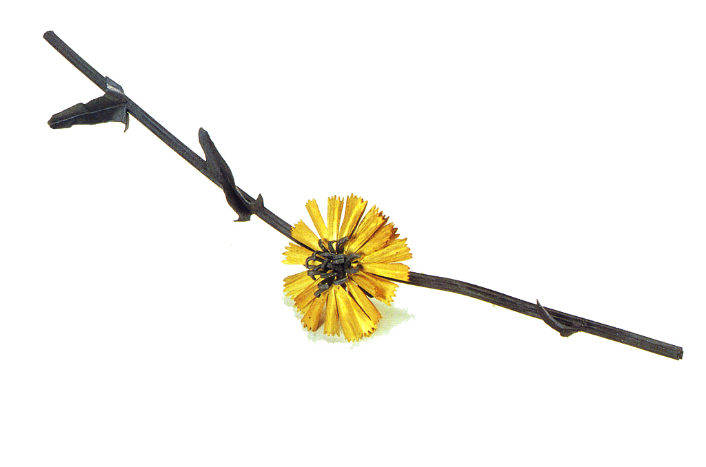 Jan Yager, Chicory Blossom Brooch, City Flora Series, 1995. Jack Ramsdale Photograph