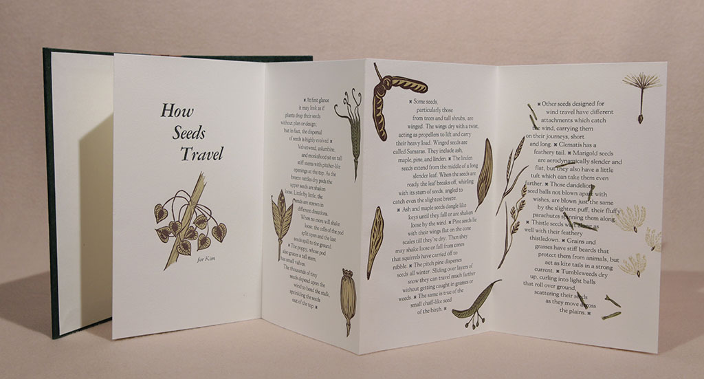 Catherine Alice Michaelis, How Seeds Travel