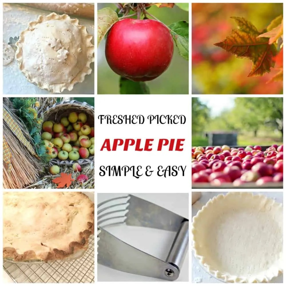 APPLE PIE SIMPLE & EASY
