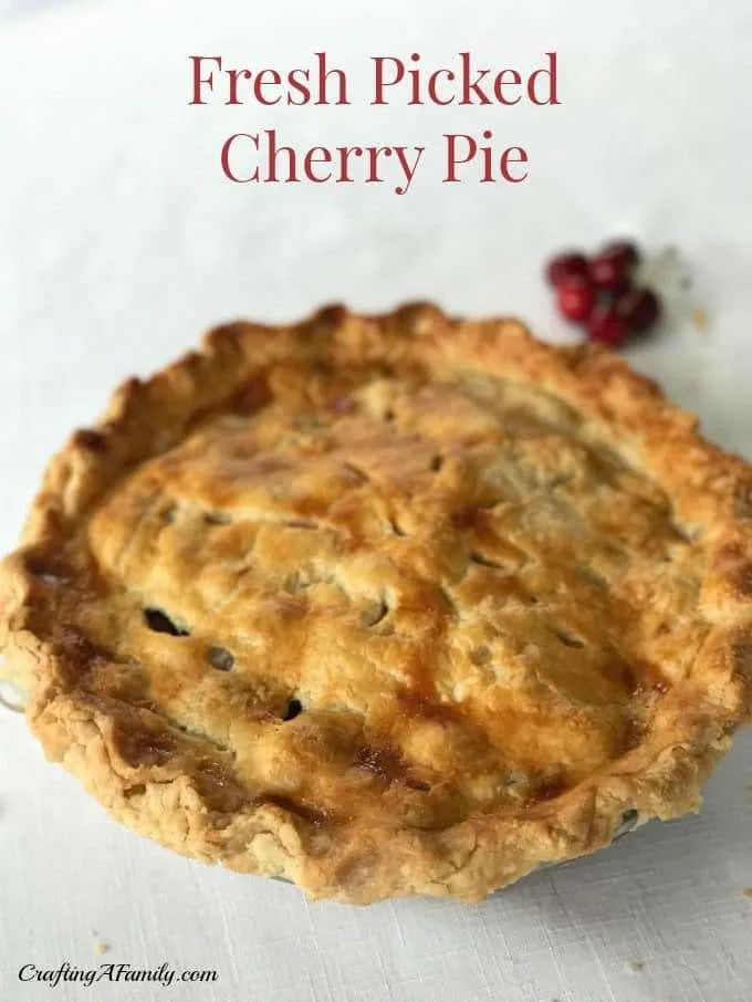 Cherry Pie Recipe. Here is an easy & delicious cherry pie recipe made from fresh picked cherries from a local farm. You can make this for a fresh summer pie or with fresh or frozen cherries for a colorful tasty Thanksgiving or Christmas pie. Your family and friends will love the bright red color of the juicy cherries, and the twist on the traditional pies for the holidays. #cherrypie #pie