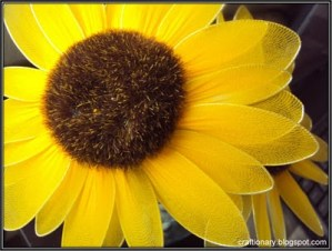 sunflower-nylon-craft-tutorial