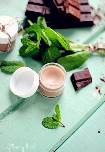 homemade gift ideas lip balm