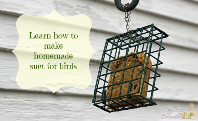 make homemade suet for birds