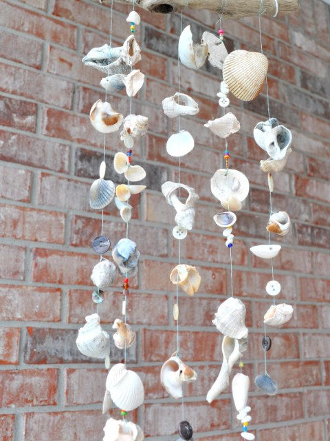 seashells windchime
