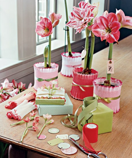 flowers gift idea