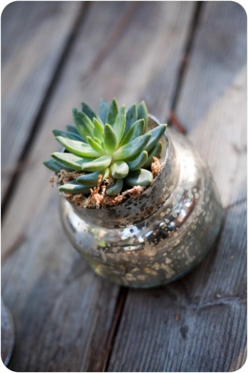 Mason Jar Light Fixtures Diy