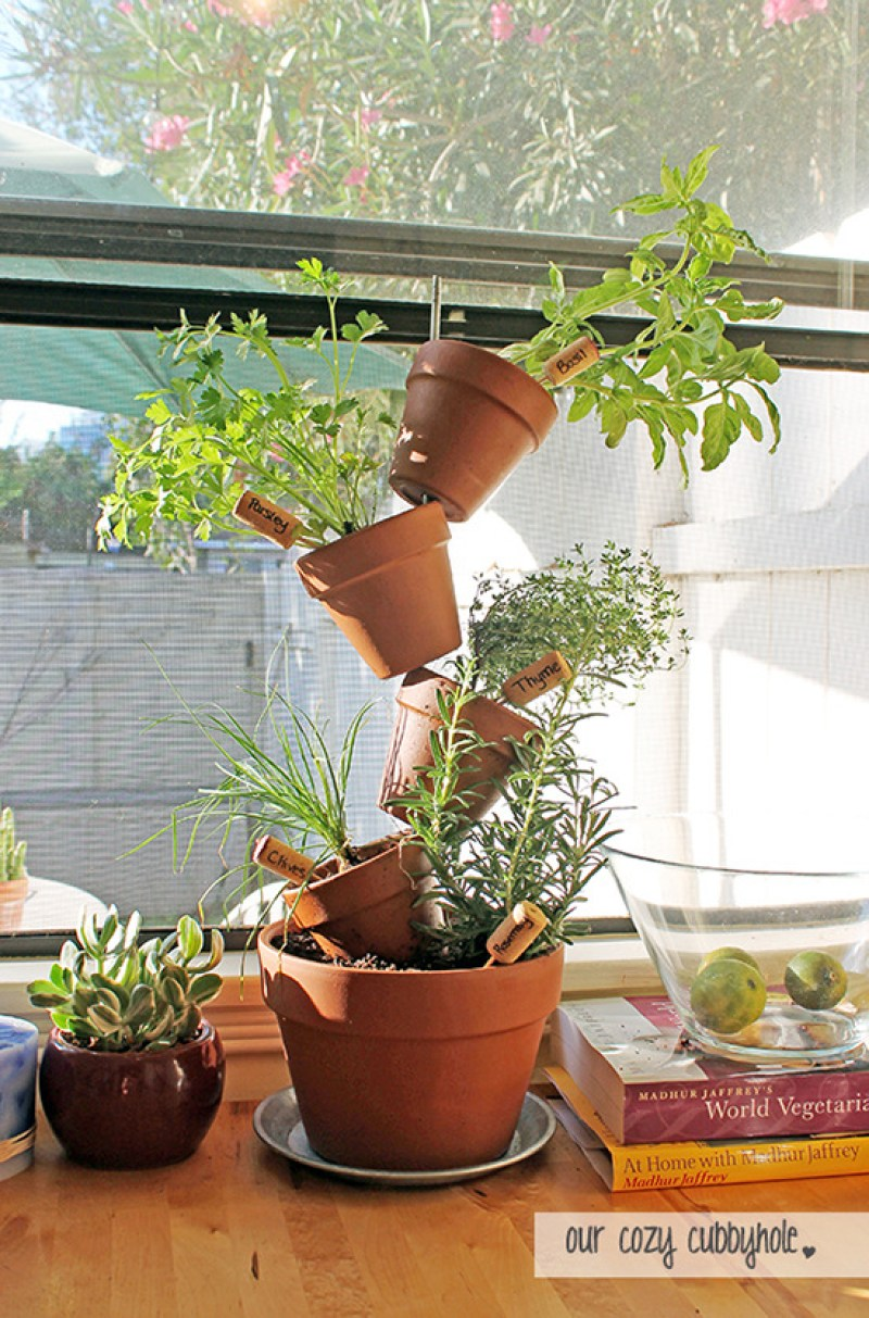 Vertical Herb Plant Display