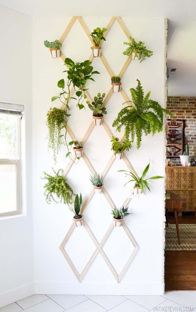 indoor plant display - trellis wall