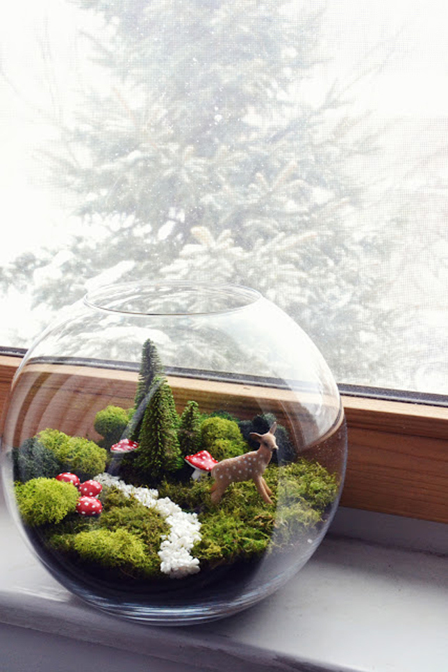 DIY terrarium gift idea