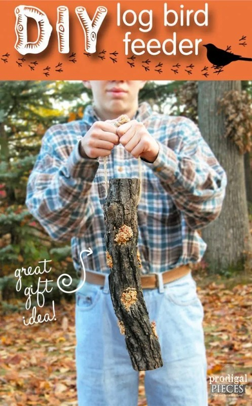 diy-log-bird-feeder
