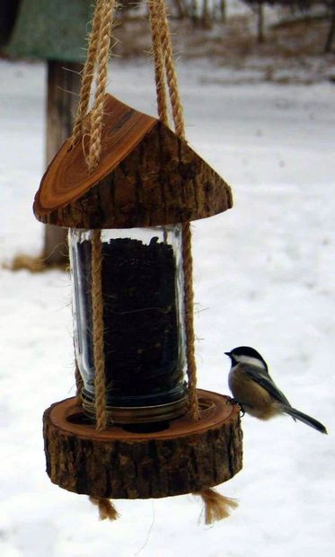 bird-feeder-from-a-tree-stump