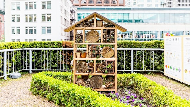 what-happens-in-an-insect-hotel-diy-bug-hotels