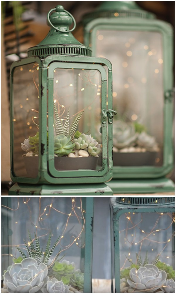 diy-lantern-succulent-diy-outdoor-lights-garden-lights-deck-lights-patio-lights-backyard-lights
