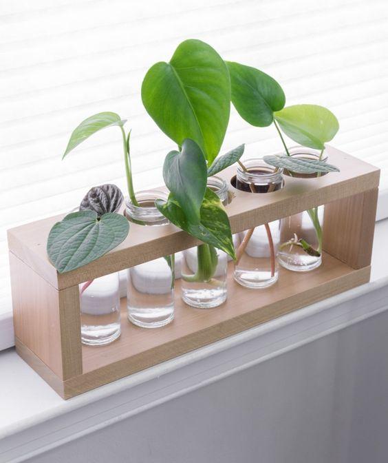modern-propagation-stand