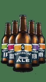 Goyeneche