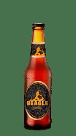 Beagle Kinoto Gose