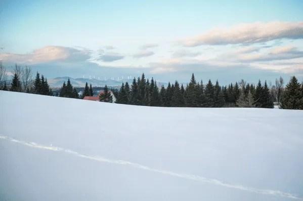 Life Arises Farm winter scene - Wolcott, VT