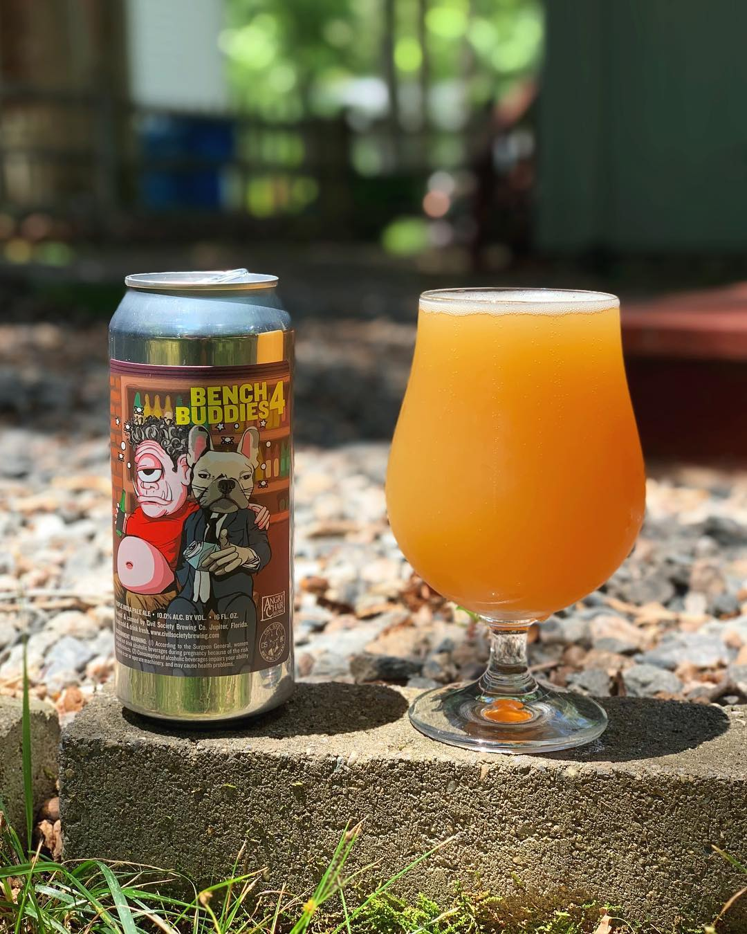 Bench Buddies 4 Triple IPA poured into a unique glass with an outdoor setting. The beer is a hazy, golden hue and the beer can has unique artwork.