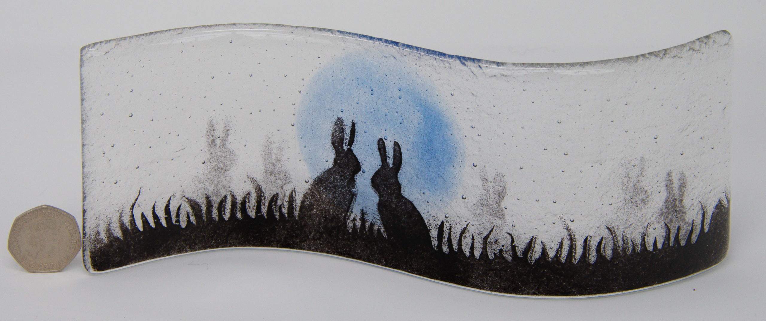 Hares in a field