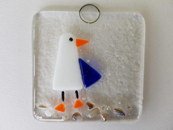 seagull on rocks