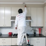 Best Colors For Kitchen With White Cabinets
