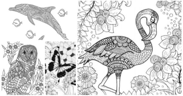 free coloring pages # 26