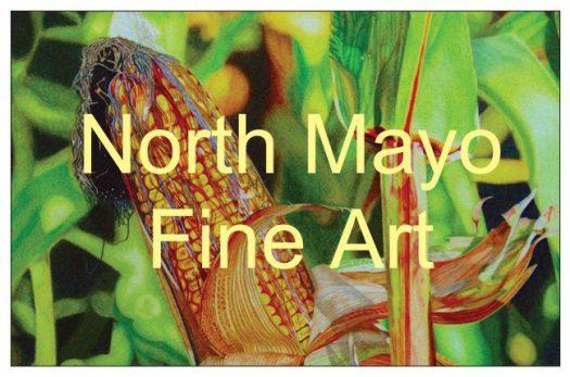 North Mayo Fine art - creative corner interview