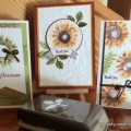 3 cards for a class using Painted Harvest stamp set