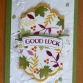 Gorgeous jewl colours for a good luck card