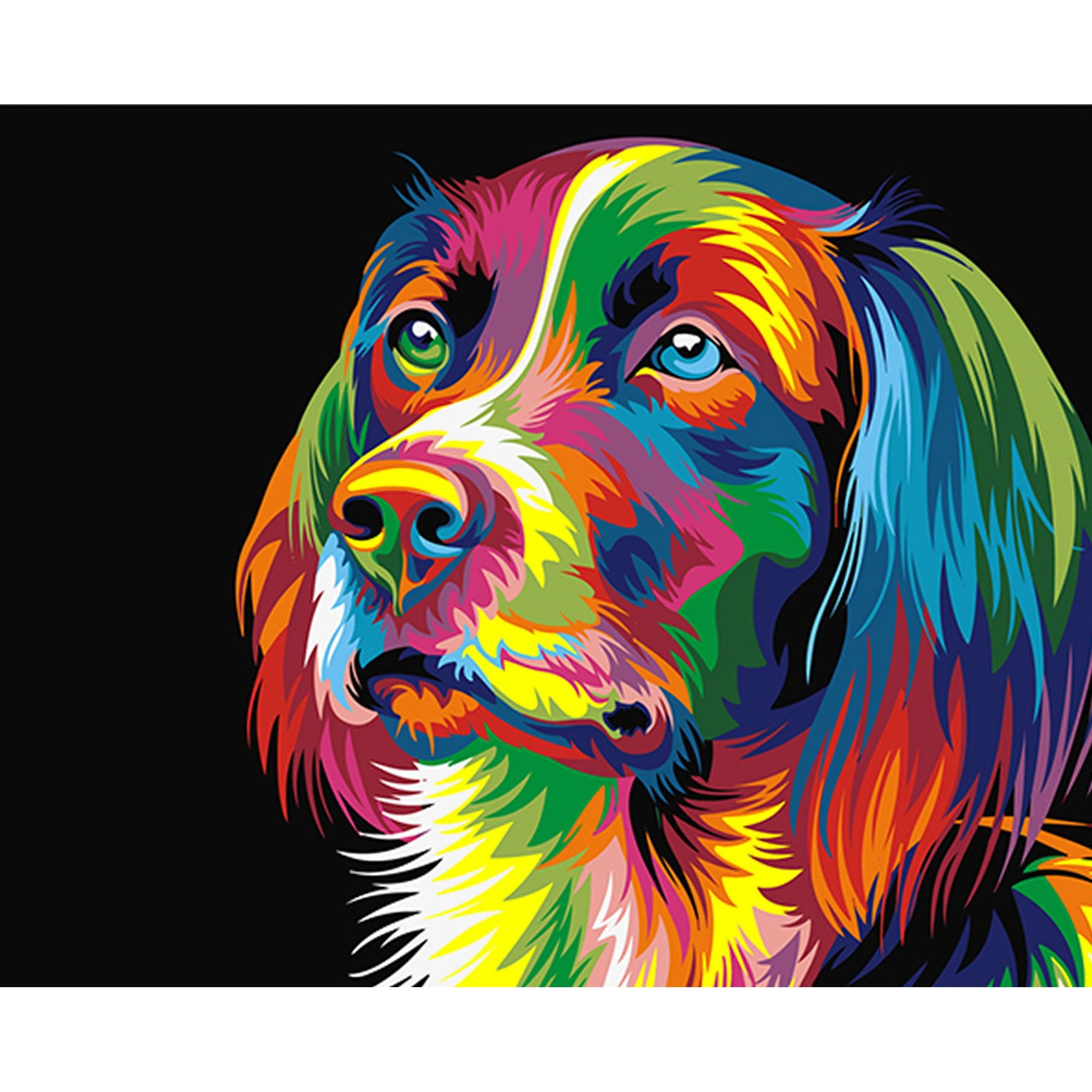 Rainbow Dog Stretched Canvas Extra Large Paint By Numbers Craftyarts Co Uk