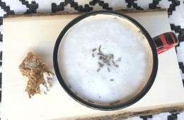 Lavender Latte tutorial, by CraftyChica.com.