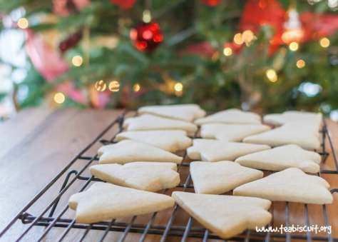 Christmas cookies are usually full of things like sugar, dairy, and gluten. For people with chronic illness, those ingredients mean that we can't have them because it will exacerbate our symptoms. So here is a list of healthy christmas cookie that are great for everyone to enjoy!