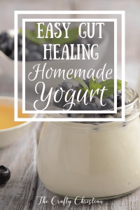 Easy Gut Healing Homemade Yogurt {Recipe}
