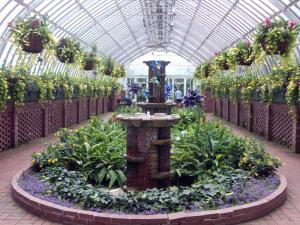 Phipps Conservatory - Part 1 - July 2017