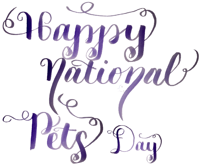 Happy National Pets Day 2018 -- Visit CraftyJBird.com for more info...