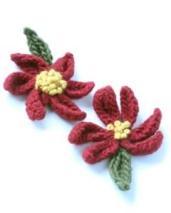 pointsettaflowers